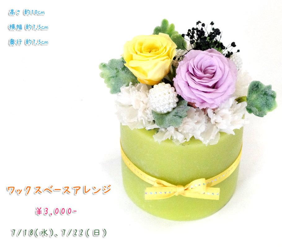 p_flower_201807.jpg