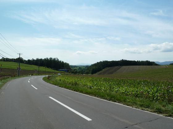 美しい美瑛の丘の風景が続く②