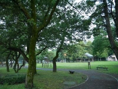 神柱公園(1)