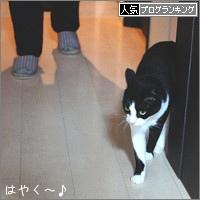 dai20180409_banner.jpg