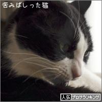 dai20180410_banner.jpg