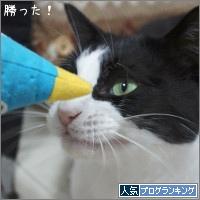 dai20180417_banner.jpg