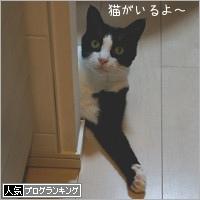 dai20180706_banner.jpg