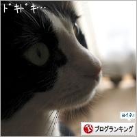 dai20180709_banner.jpg