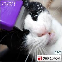 dai20180710_banner.jpg