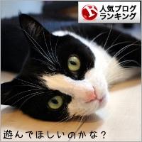 dai20180806_banner.jpg