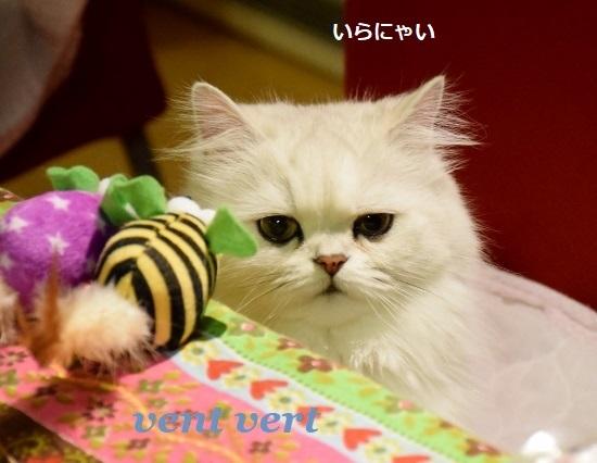 ねずみのおもちゃ4