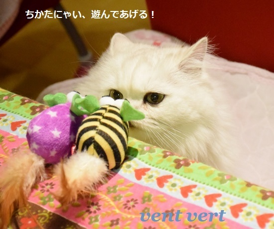 ねずみのおもちゃ6