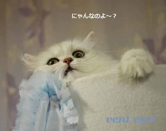 梅雨かな?4