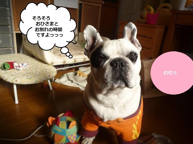 にこら201011to201108 2994