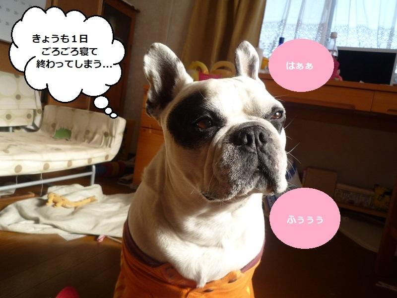 にこら201011to201108 2996