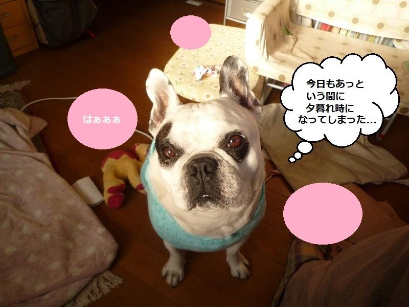 にこら201011to201108 2998