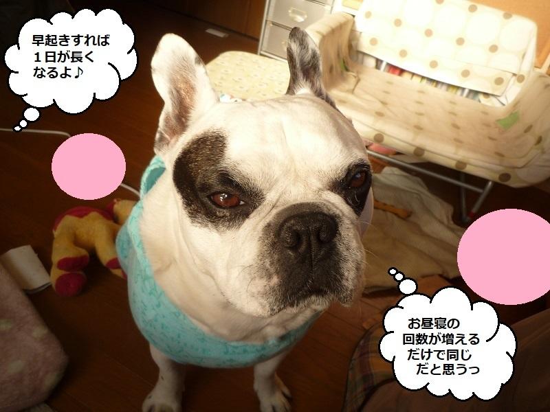 にこら201011to201108 3000