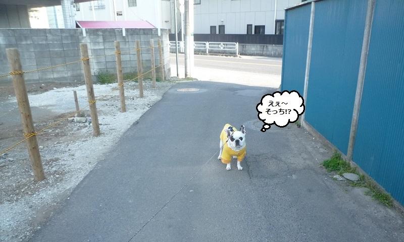 にこら201011to201108 3003 - コピー
