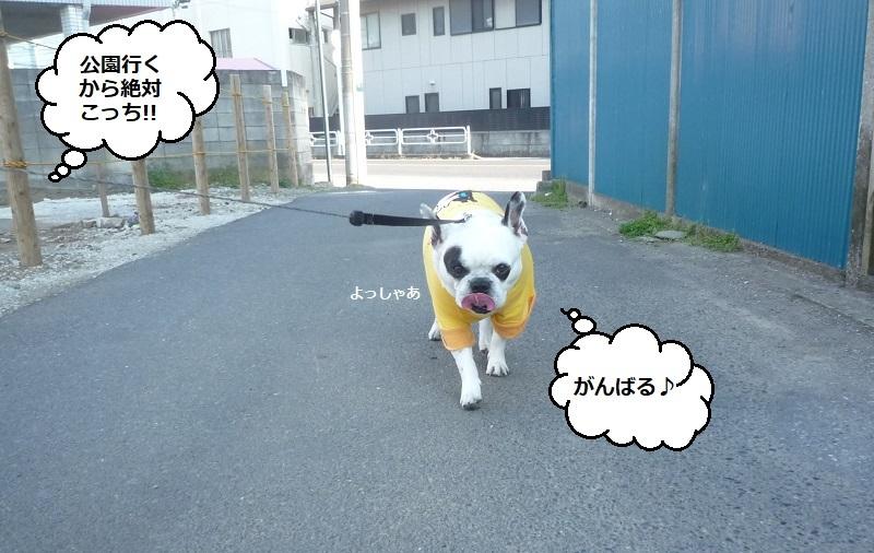 にこら201011to201108 3004 - コピー