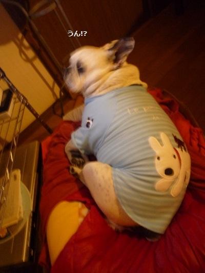 にこら201011to201108 3037