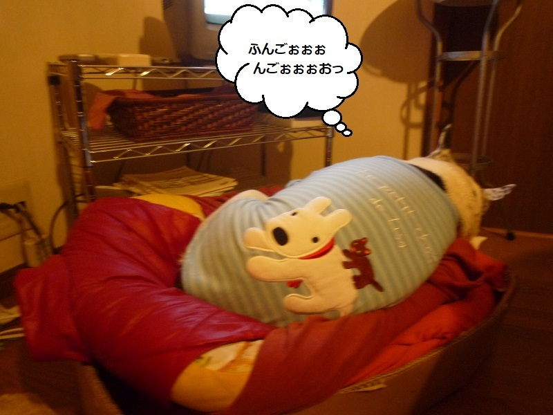 にこら201011to201108 3040