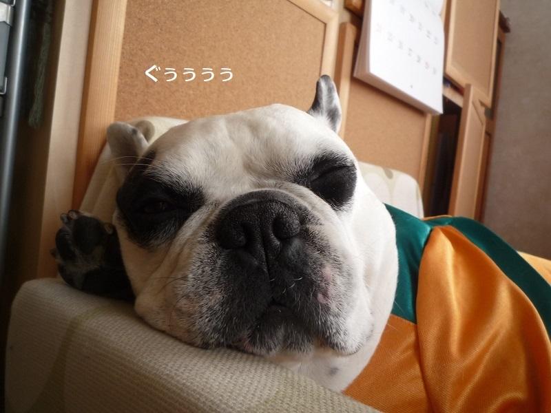 にこら201011to201108 3026