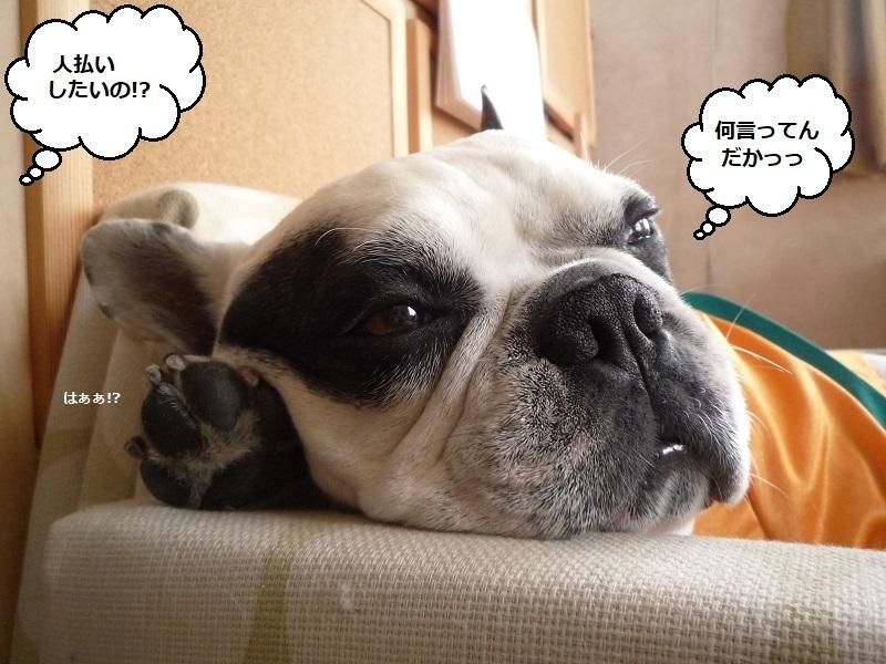 にこら201011to201108 3027