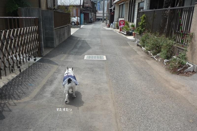 にこら201011to201108 3058 - コピー