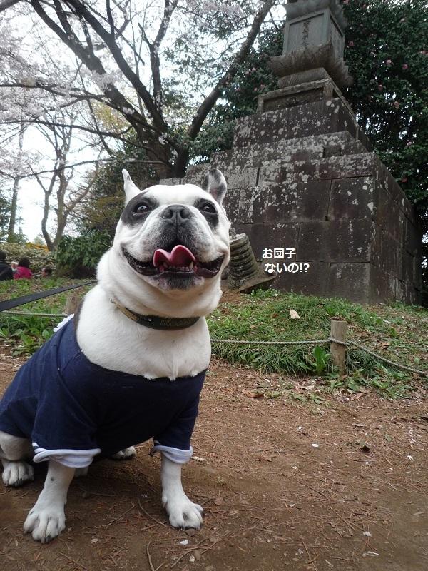 にこら201011to201108 3062