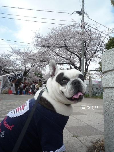 にこら201011to201108 3064