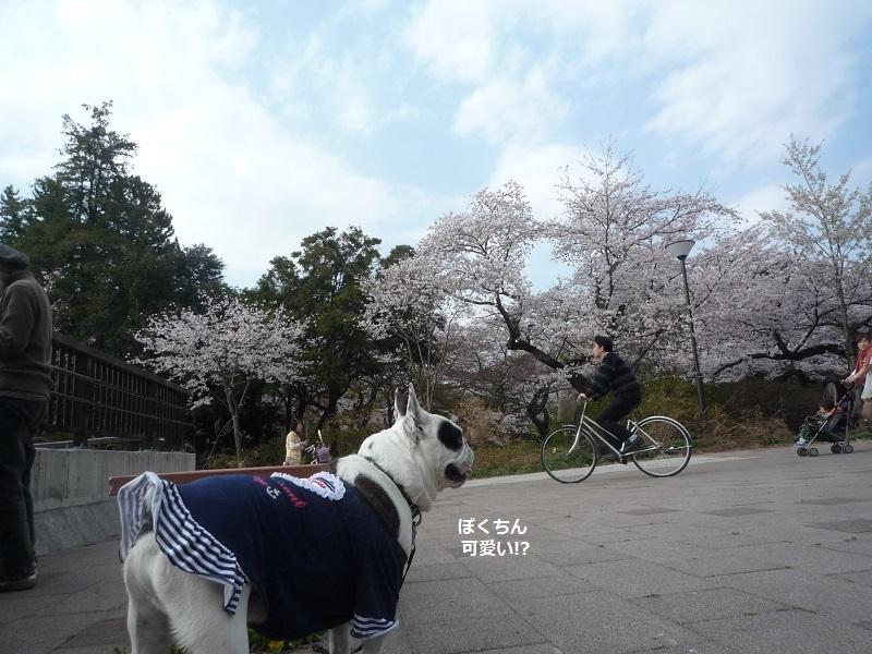 にこら201011to201108 3067