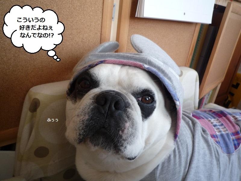 にこら201011to201108 3091