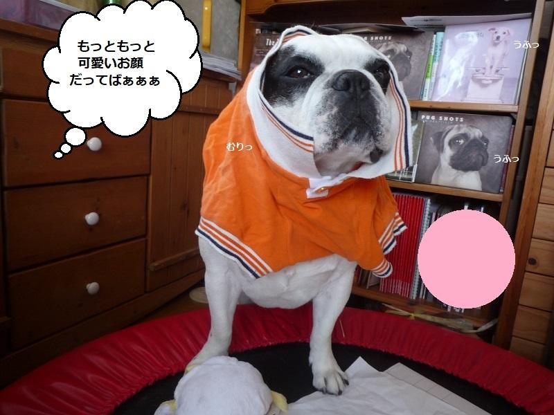 にこら201011to201108 3105