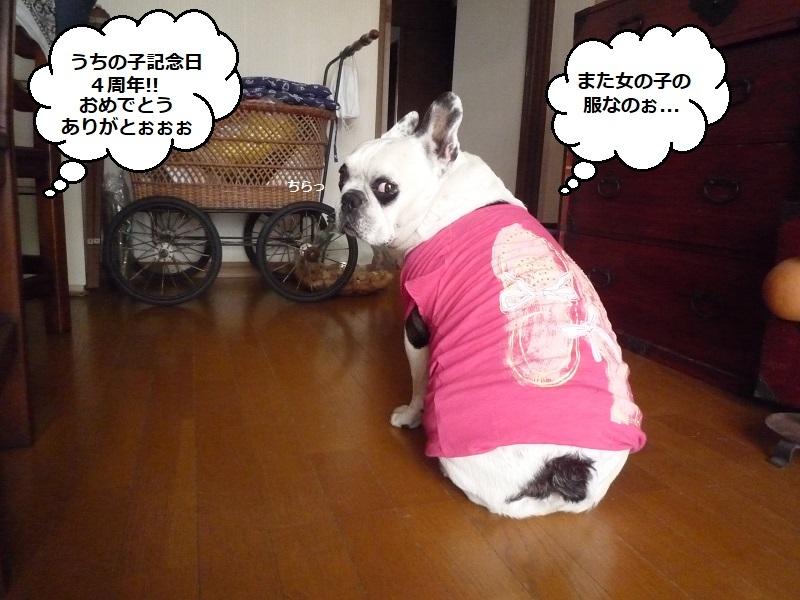にこら201011to201108 3120