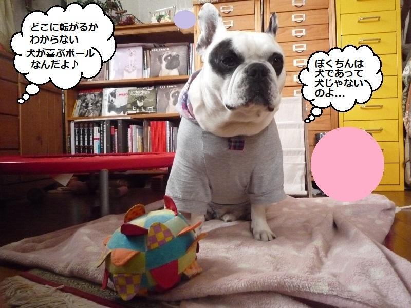 にこら201011to201108 2965