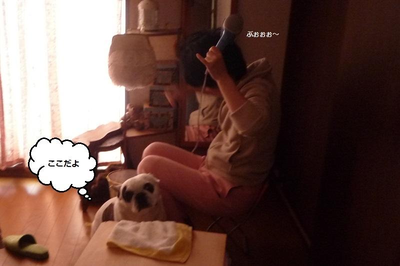 にこら201011to201108 3122