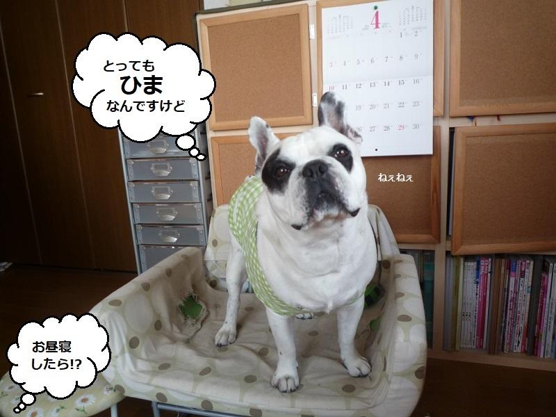 にこら201011to201108 3127