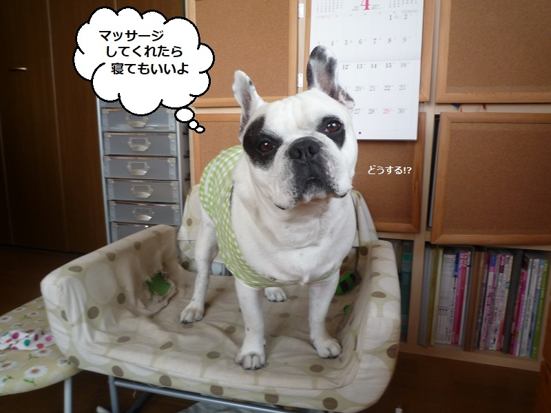 にこら201011to201108 3129