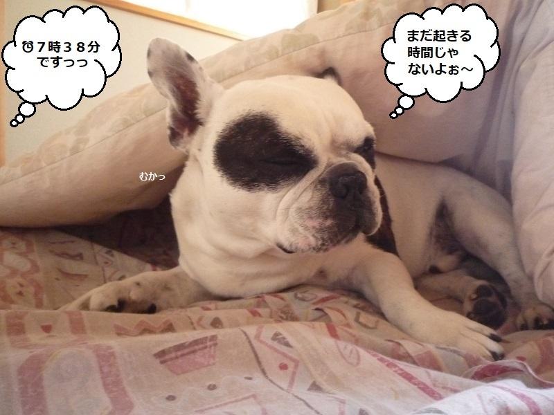 にこら201011to201108 3216