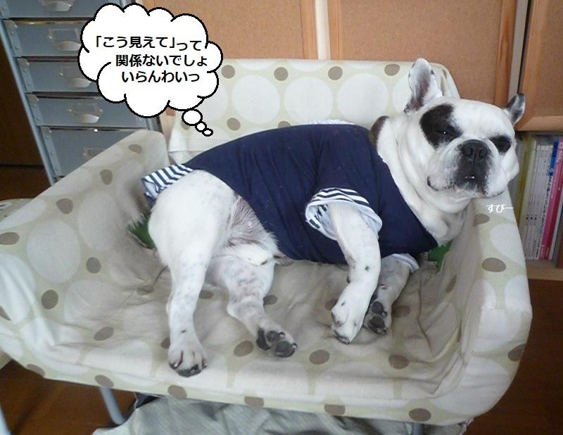 にこら201011to201108 3321