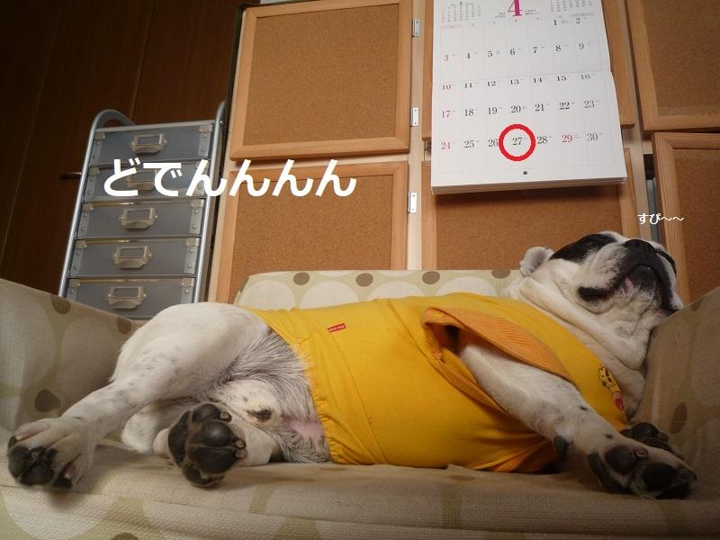 にこら201011to201108 3326