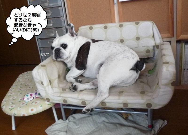 にこら201011to201108 3410