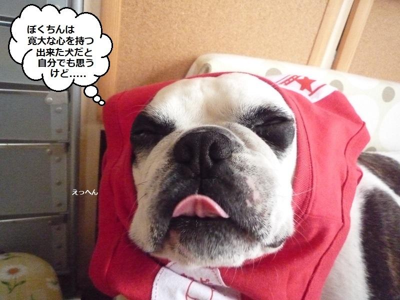 にこら201011to201108 3168