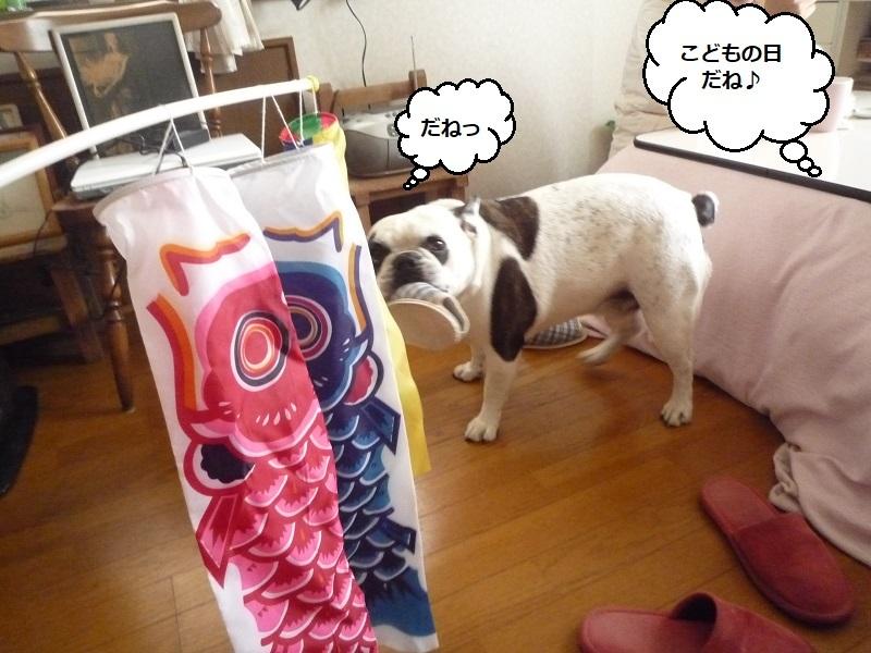 にこら201011to201108 3445