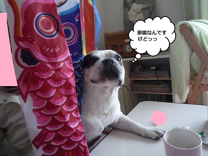 にこら201011to201108 3492