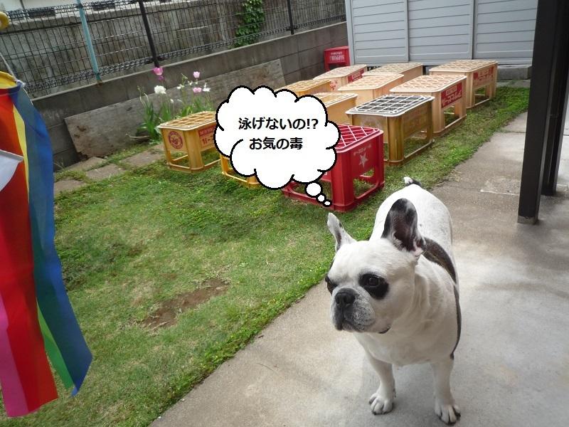 にこら201011to201108 3641