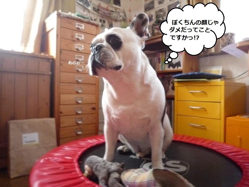 にこら201011to201108 3665