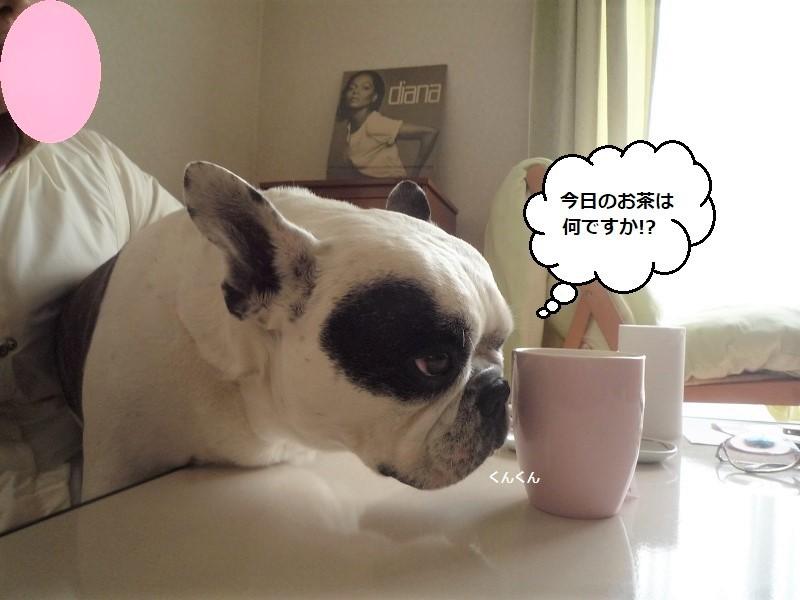 にこら201011to201108 3524 (2)