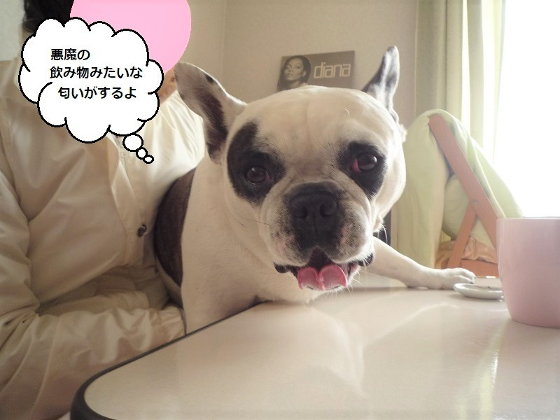 にこら201011to201108 3526 (2)