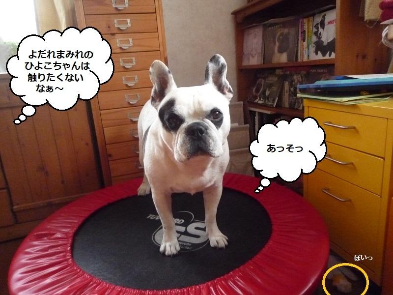 にこら201011to201108 3709