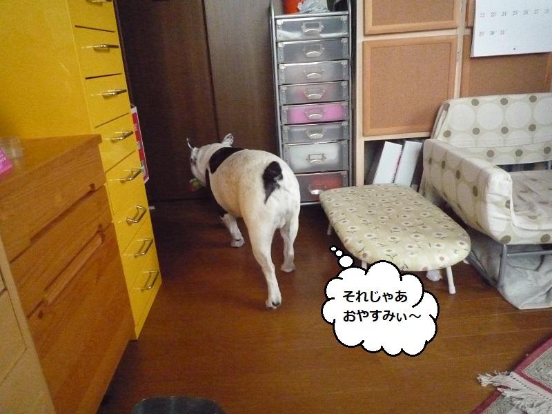 にこら201011to201108 3725