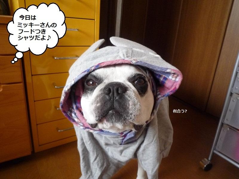 にこら201011to201108 3753