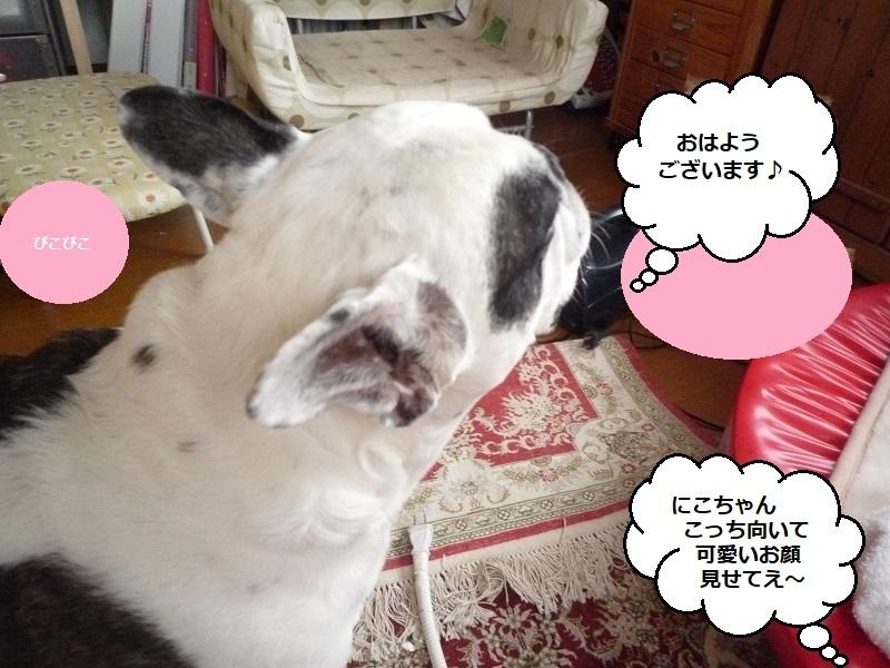 にこら201011to201108 3794