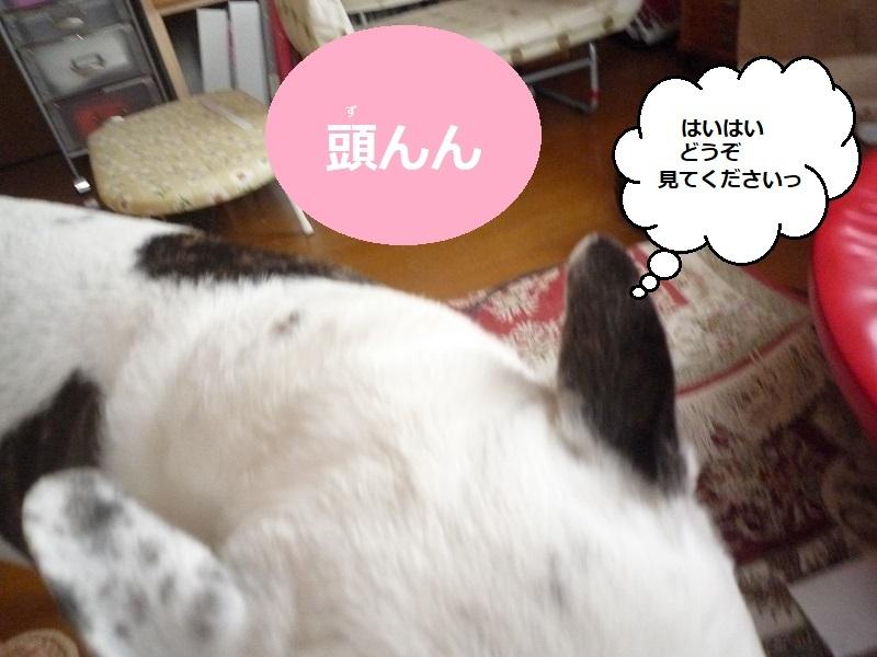 にこら201011to201108 3795